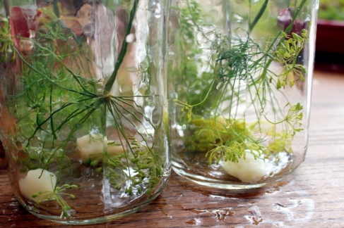 How to make delicious homemade canned dill pickles. Small Town Girl Blog.