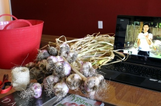 How to braid garlic with video tutorial!